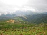 Payasage verdoyant de la Galice