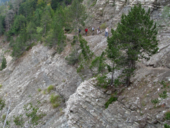Descente du mont ventoux GR 9