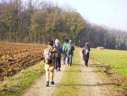En route pour le Kochersberg